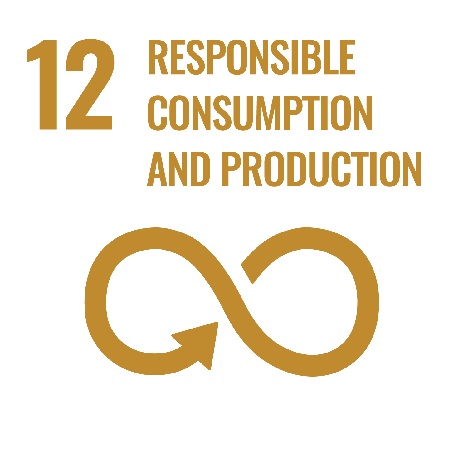 12. Responsible Consumption and Production